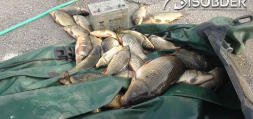 av yasağı ve yasak ekipman yakalandı
