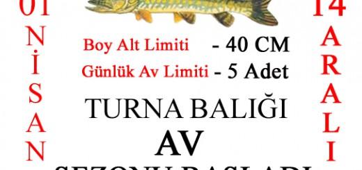 TURNA AV SEZONU BANNER_edited-1