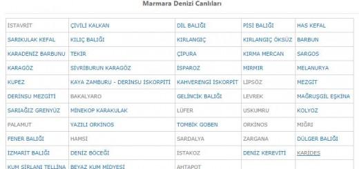 Marmara deniz balıkları listesi