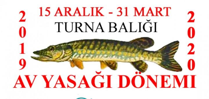 Turna balığı 2020 av yasağı