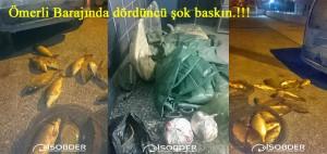 Ömerli barajında dördüncü şok baskın_edited-1